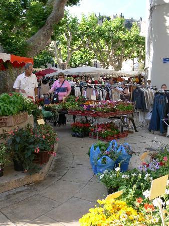 Jardin d'Emile: Cassis Market