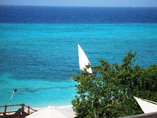 The Manta Resort: blue blue water