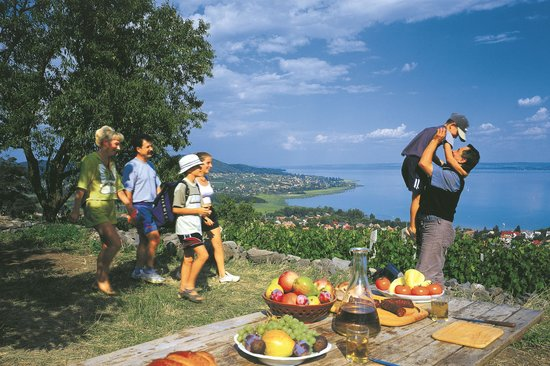 Somogy County, Hungary: Lake Balaton, picnic on the north coast