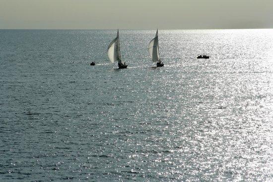Somogy County, المجر: Balaton, sailboat