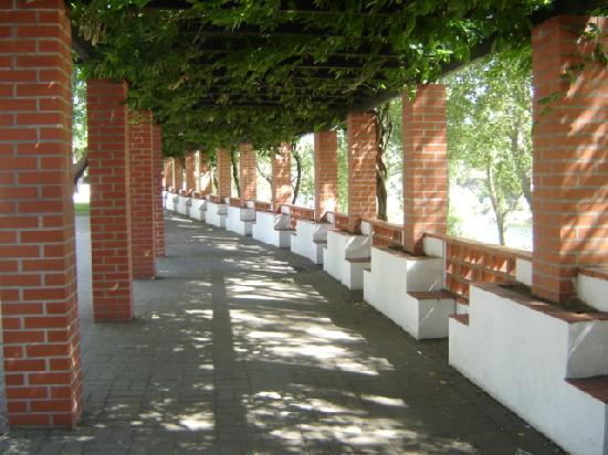 Casa Joao Chagas: Constancia, Jardim