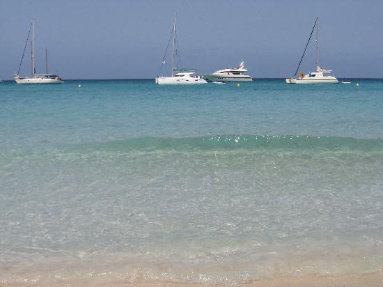 Strand Playa de ses Illetes: Spiaggia Illetes