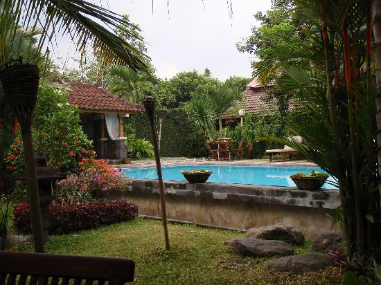 Rumah Mertua Boutique Hotel & Garden Restaurant & Spa: Garden and swimming pool
