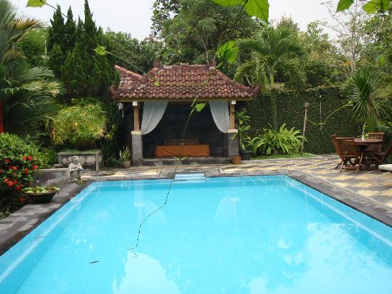 Rumah Mertua Boutique Hotel & Garden Restaurant & Spa: Swimming pool
