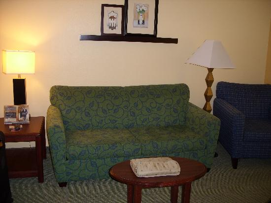 SpringHill Suites Houston Brookhollow: Living Room