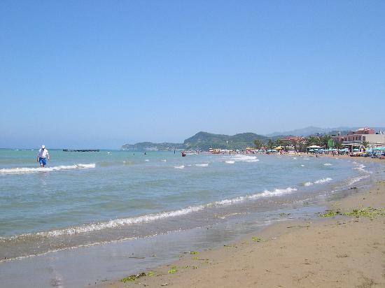 Acharavi Beach Hotel Tripadvisor