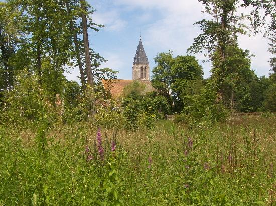 Le Cygne Hotel: Milly's magnificent church