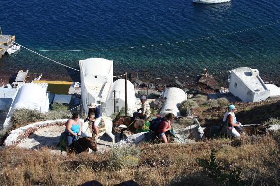 Kepulauan Aegean Timur Laut, Yunani: DONKEY RIDE