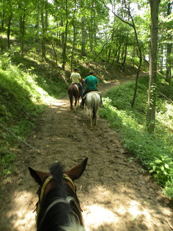 Sandy Bottom Trail Rides