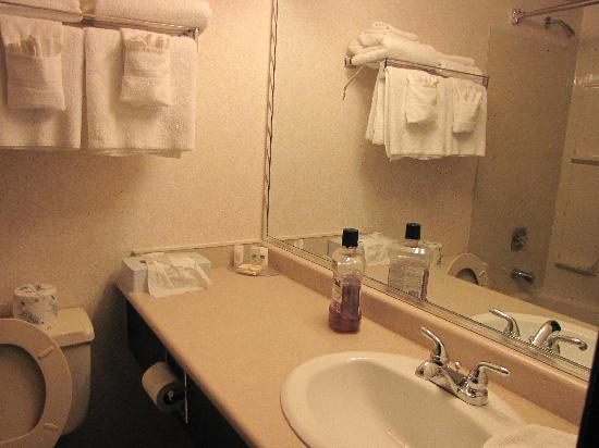 Canadas Best Value Inn & Suites- Castlegar : Bathroom