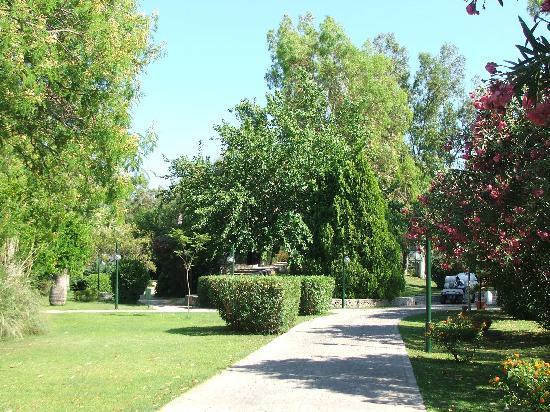 Sarigerme, ตุรกี: Walkway