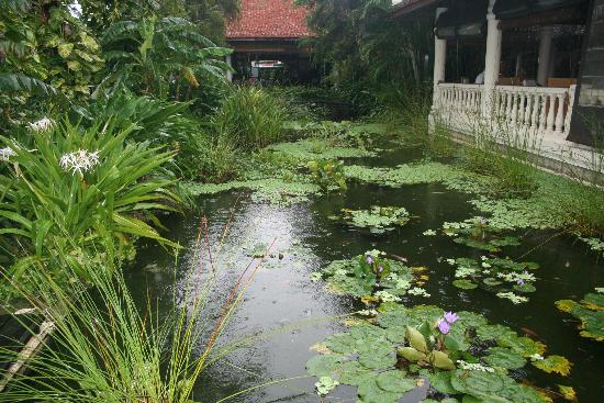 Evason Ana Mandara Nha Trang: Lovely Gardens
