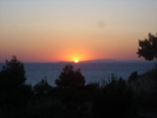 Palmin Sunset Plaza: Sunset