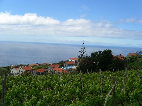 Quinta das Vinhas: vue depuis casa