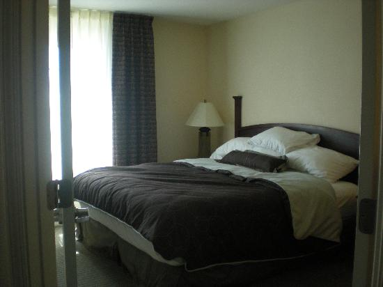 Staybridge Suites San Antonio NW near Six Flags Fiesta Texas: master bedroom-excuse our mess