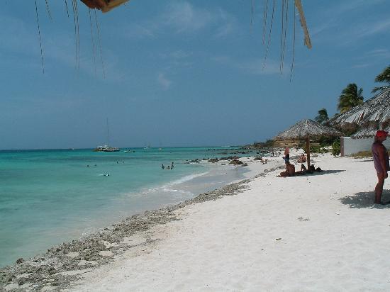 Arashi Beach: Boca Catalina Beach