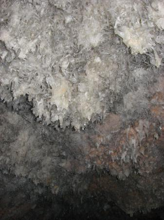 Bellamar Caves: Interesting formations