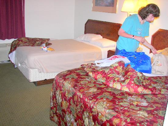 The Econo Lodge Milwaukee Airport Hotel: Beds were ok