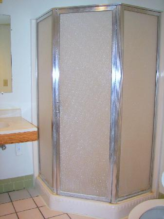 The Econo Lodge Milwaukee Airport Hotel: Bathroom shower