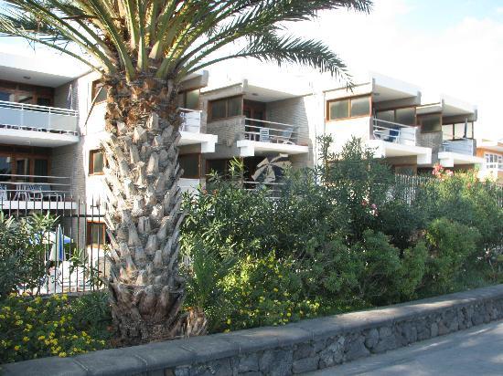 Apartamentos El Paseo: El Paseo von der Promenade gesehen