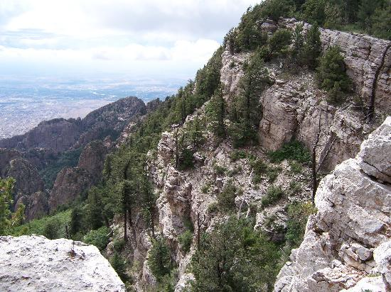 Sandia Peak Tramway: Birds eye view