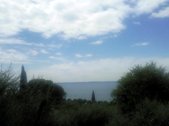 أبارتامينتي أركا آند كا مور: View from poolside