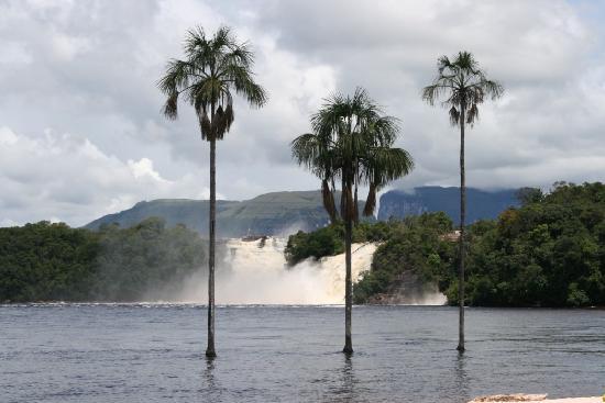 Playa el Agua, Venezuela: Angel Falls Trip
