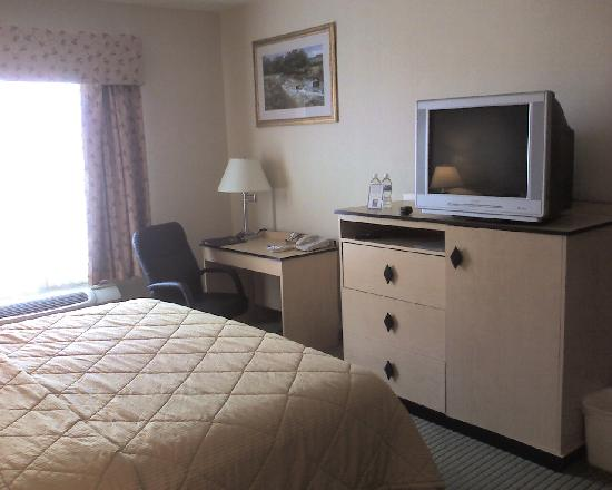 Comfort Inn & Suites Airport: The features