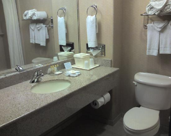 Comfort Inn & Suites Airport: Bathroom