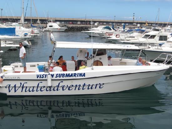 Puerto Colon Club : Whaleadventure