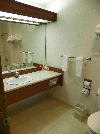 Howard Johnson Express Inn - Leavenworth: Bathroom