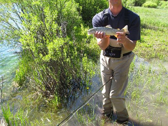 how-to fly fishing instruction - picture of flat creek ranch, Fly Fishing Bait