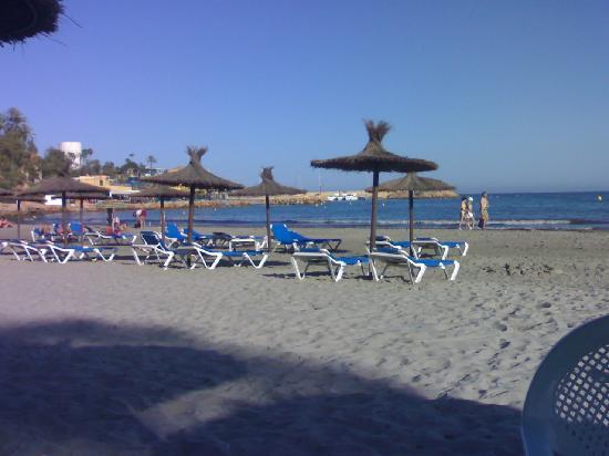 Torrevieja Hotels  Star