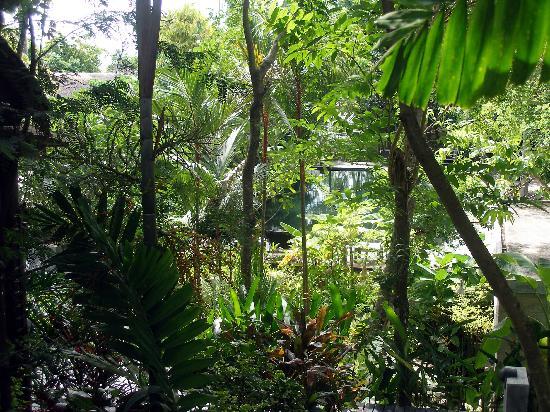 The Sundays Sanctuary Resort & Spa: sundays1