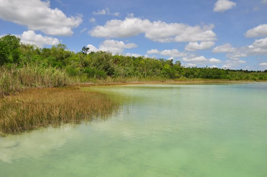 Punta Laguna Nature Reserve: Lake at Punta Laguna