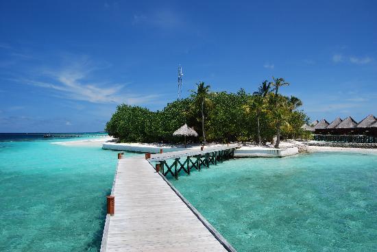 Mirihi Island Resort: View From Our Front Door