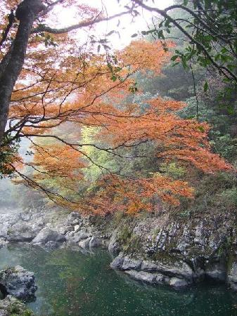 Yamaguchi, اليابان: gorgeous hike