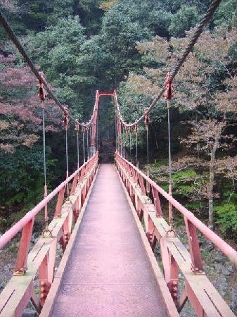 Yamaguchi, Japan: bridge at the end of the hike