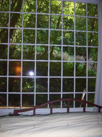 Bridal Veil Lodge: View from Bed