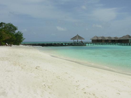 Maafushivaru: La spiaggia...