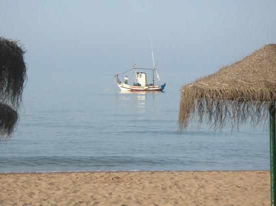 Marbella Playa Hotel: Morning view