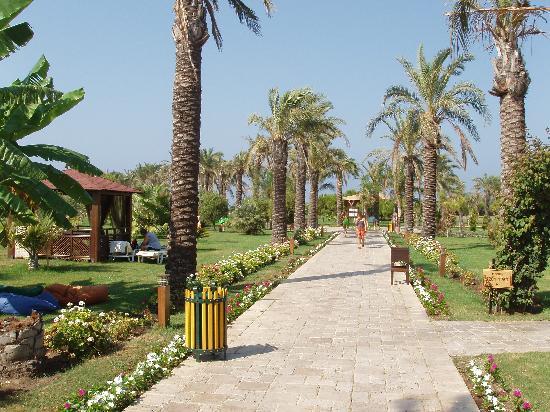 Club Calimera Serra Palace : walk to the beach