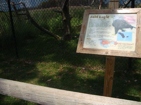 Cape May County Park & Zoo: Information is readily available