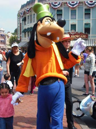 Disney Land Hotel Booking Review