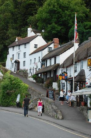 Shelley's: Lynmouth