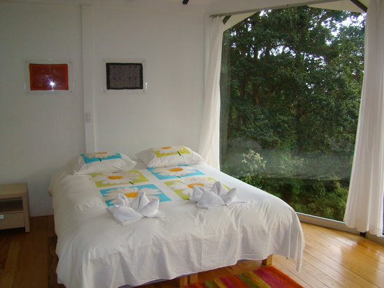 Dantica Cloud Forest Lodge : Stylisch Living Room with view to the forest