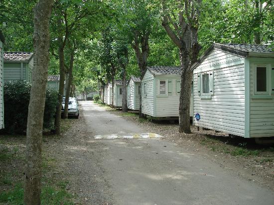 Camping Antipolis: Rentabilité de l'espace avant le confort