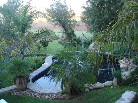 De Rust, South Africa: The pool