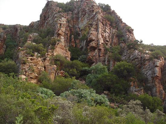 Baviaanskloof Nature Reserve, South Africa: Surroundings