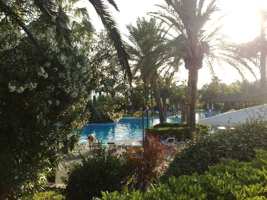restaurants near port blue club pollentia resort alcudia majorca balearic islands
